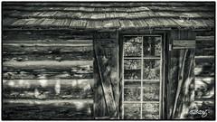 Wegmann's Window_mono (dougkuony) Tags: blackandwhite bw window monochrome mono cabin hdr itasca itascastatepark wegmanncabin