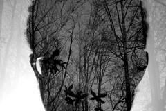 THE NATURAL (jeremiahwilson) Tags: trees blackandwhite nature silhouette contrast dark photography blackwhite head overlay critique darkart layover