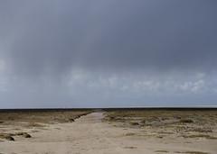 Schiermonnikoog (Jeroen Hillenga) Tags: beach nature netherlands weather strand landscape shower waddeneiland space natuur wad isle friesland schiermonnikoog bui landschap endless eiland schier ruimte frysln eindeloos
