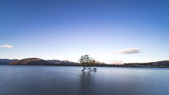 Lone tree  (KL.Lau  ) Tags: city travel sunset newzealand summer vacation sky cloud sun sunlight lake holiday reflection tourism beach water clouds river landscape island bay pier boat seaside sand support waves waterfront outdoor sony horizon voigtlander shoreline scenic peaceful wave atmosphere scene calm lakeside shore nz tropical lone barrier coastline obstruction boundary seashore wanaka 15mm tranquil a7 lonetree haida breakwater nd1000