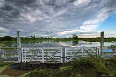 Camino en mal estado (javierinsitu) Tags: argentina san martin camino tokina campo tranquera cerrado chaco norte inundación gral 1116