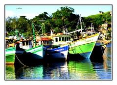 Barcos pesqueiros (o.dirce) Tags: riodejaneiro barcos niteri jurujuba barcospesqueiros odirce