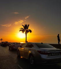 S u n s e t (Farhat M) Tags: sunset sky people cars beach clouds reflections landscape sand traffic wheels palmtree s7edge
