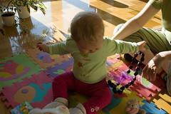 DSC_3405.jpg (Kaminscy) Tags: fun toy room sunny teddybear zabawa pokoj slonce zabawka korale kingakamiska
