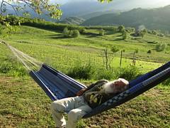 swinging blues (nightcloud1) Tags: green garden blues swing hammock wetspring sibillinimountains textilerecycling