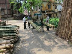IMG_7020.jpg (Kuruman) Tags: sylhet bangladesh srimangal
