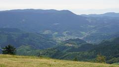 Oppenau from above (1) (Tom Rataj) Tags: germany blackforest schwartzwald oppenau
