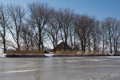 (ice landscape) ijs landschap langs Kanaaldijk, oost-Graftdijk, Netherlands (CBP fotografie) Tags: winter holland ice netherlands landscape farm nederland landschap noordholland ijs boerderij northholland laagholland oostgraftdijk