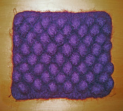 Felted potholder (Winterbound) Tags: felted knitting handmade crafts handknitted