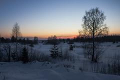 Закат в Алёшино
