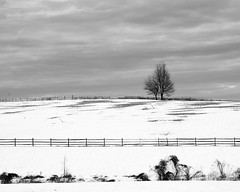 52 Week Photography Challenge - Week 5 - Landscape Black & White (t conway) Tags: