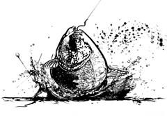 98976650-trao (naka2008ilustrador) Tags: peixe trao vetorial tambaqui