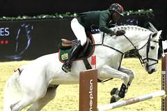 GO4G3386_R.Varadi_R.Varadi (Robi33) Tags: switzerland referee jumping scuba testing elite trophy exercises spectator horseriding worldclass horsewoman horseequestrian csibasel