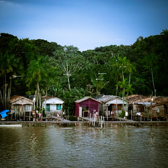 On the shores of the Amazon