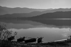 Calm lake shore (Yannis_K) Tags: blackandwhite lake water monochrome landscape calm greece layers serene lakekerkini nikon1685mmf3556vr nikond7100 yannisk