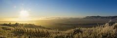 Panorama sur les hauteur de sigolsheim (christophe.meyer1985) Tags: panorama alsace matin leverdesoleil panoramique hauteur hautrhin