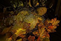 JujuArtEPSe-4x6-5186 (Mike WMB) Tags: leaves nude goatee nipple