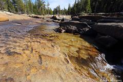 Tuolumne River, Yosemite National Park, California (rollie rodriguez) Tags: california yosemitenationalpark tuolumneriver