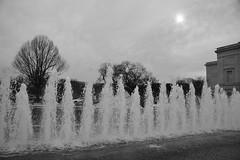 Fountain between the East and West Buildings of the National Gallery of Art (jmlwinder) Tags: winter blackandwhite washingtondc fountains nationalgalleryofart sundayafternoon treesinwinter plazabetweeneastandwestbuildings