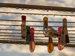 IMG_2565 (Liat Yavneh Ripp) Tags: clothespins