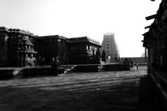 Chennakeshava Temple, Belur (Premnath Thirumalaisamy) Tags: shadow blackandwhite art monochrome architecture canon temple eos rebel kitlens hassan 1855mm karnataka belur southindia hoysala 550d chennakesava lordvishnu t2i