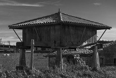 Horreo (Oscar F. Hevia) Tags: espaa barn spain gijn asturias garner horreo granary asturies xixn laprovidencia granero laora principadodeasturias