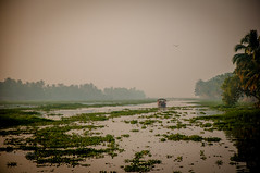 Morning backwater ride (PicsofAB) Tags: india fog sunrise boat quiet outdoor houseboat peaceful kerala tranquil backwaters boatride keralabackwaters kumarakom