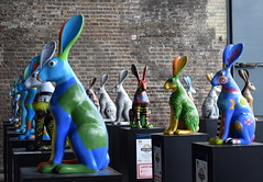 Rabbits Abound (Keith Mac Uidhir  (Thanks for 3.5m views)) Tags: ireland dublin color colour rabbit bunny art colors easter colorful colours display pascua irland exhibition pscoa colourful ostern easterbunny dublino irlanda irlande pasqua pasko ierland easterrabbit irska wielkanoc pques dubln irlandia lirlanda irsko  paskalya airija  irlanti  cng  iirimaa ha     rorszg         rlnd