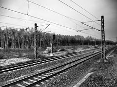 Gleise (tholiefot) Tags: bw white black monochrome contrast train industrial zug diagonal rails gleise voltage recklinghausen linien