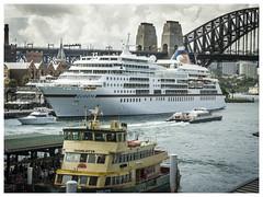 M.V. Europa (TOXTETH L8) Tags: australia circularquay wikipedia newsouthwales sydneyharbour sydneyharbourbridge ferryboat hapaglloyd mveuropa