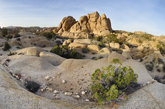 Jumbo Rocks (BongoInc) Tags: california nationalpark joshuatrees mojavedesert joshuatreenationalpark desertsouthwest