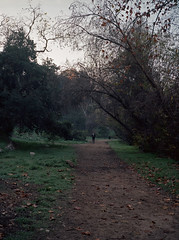 Morning Walk (edwardconde) Tags: california film mediumformat bridges pasadena ipad fujifilmga645 photogene editedontheipad edwardconde73 photographersontumblr
