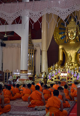 The nap (Isabel-Valero) Tags: travel orange dog thailand temple golden shrine asia buddha buddhist religion culture monk tailandia wat buda singh phra