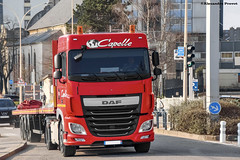 DAF 460 Euro 6 (Alexandre Prvot) Tags: truck construction transport camion construccin lorraine worksite buildingsite travaux chantier remorque cugn grandnancy baustellebauplatz