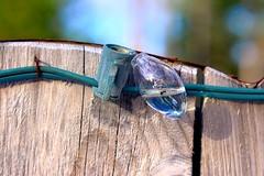 Winters Might (Cyber Drifter) Tags: light macro green broken water glass bulb fence wire rust filled broke staple