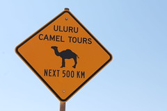 Uluru (Emily Winkworth) Tags: travel travelling travels tour oz australia icon tourist traveller camel outback uluru aus iconic downunder ayersrock yellowsign theredcentre