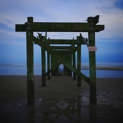 """cerulean catch (listening to """"walk on"""", neil young) (jeneksmith) Tags: sky reflection beach nature water canon pier sand natural shoreline shore bluehour lowtide gloaming passchristian mississippisound canoneos70d"""