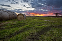 Pull over (Through Bri`s Lens) Tags: trees sunset sky grass track skies yorkshire bales brianspicer canon5dmk3 canon1635f4