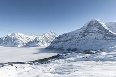 Bernese Oberland (webeagle12) Tags: winter snow ski mountains alps switzerland europe swiss resort valley grindelwald lauterbrunnen eiger bernese jungfrau oberland wetterhorn mannlichen susse nikond90