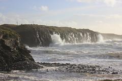 IMG_8341 (DaveGifford) Tags: ireland spanishpoint wildatlanticway
