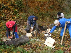 Wood Cutting - Balkan Style (seanfderry-studenna) Tags: wood trees male men nature grass forest countryside team workers woods europe european outdoor working gang chainsaw logs croatia cutting axe balkans eastern job firewood axes hrvatska croat serb miocinovici