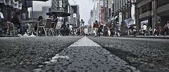 dp0q_160413_E (clavius_tma-1) Tags: white tokyo ginza sigma line    asphalt quattro dp0 pedestrianprecinct