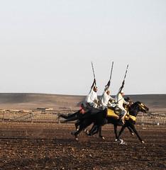 Morocco (mariamartins155) Tags: horse morocco cavalos cavalo marrocos cavaleiros