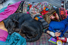 Taking a rest with his dogs at the Toronto 420 cannabis celebration in Dundas Square (Phil Marion) Tags: travel wedding boy vacation people woman hot sexy ass beach girl beautiful beauty sex canon naked nude weed nipples slim boobs nu candid dick young hijab 420 nackt explore teen tranny xxx dope marijuana chubby plump cannabis  burqa nudo desnudo  nubile telanjang schlampe    5photosaday explored  thn nijab    kha    malibog    philmarion         saloupe