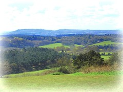 glorious Surrey Hills ..from  Newlands  Corner.. (John(cardwellpix)) Tags: from uk corner sunday surrey hills april guildford newlands 17th viewed albury 2016 merrow