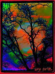 full moon painted (Sonja Parfitt) Tags: color tree manipulated bright layered