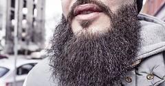 """Der Bart. Die Bärte. Der Mann hat eine Bart. Der Mann trägt einen Bart. • <a style=""""font-size:0.8em;"""" href=""""http://www.flickr.com/photos/42554185@N00/26682920405/"""" target=""""_blank"""">View on Flickr</a>"""