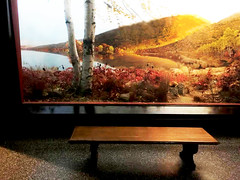 """An October Afternoon Near Stissing Mountain"" (JFGryphon) Tags: bench happy monday diorama 1951 taconic hbm stissingmountain thompsonpond anoctoberafternoonnearstissingmountain"