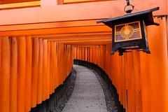 Fushimi Inari Taisha I (Douguerreotype) Tags: red japan temple kyoto gate shrine buddhist tunnel lantern torii vermilion leadenhallbuilding