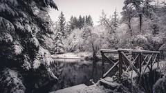 Winter Wonderland (Augmented Reality Images (Getty Contributor)) Tags: bridge trees winter snow cold reflection water forest canon woodland landscape scotland pond perthshire